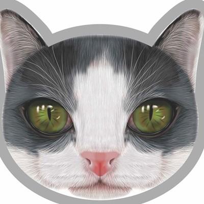 Almofadas Decorativas Divetidas Pets