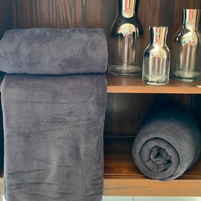 Manta Queen Fleece Microfibra Lisa Andreza