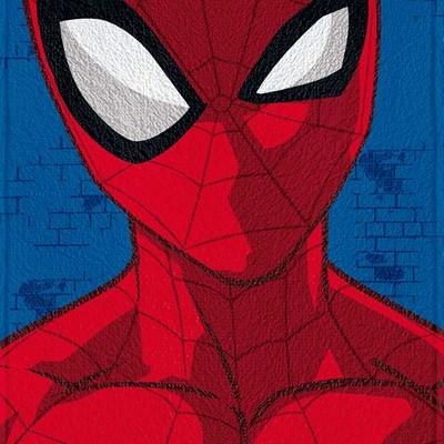 Toalha de Banho Infantil Felpuda H.Aranha Spider Lepper 05